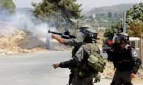 الاحتلال اطلاق نار.jpg