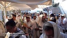 اليهود المتدنينين يقتحمون الاقصى.jpg