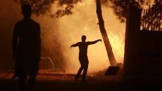 لبنان يحترق غابات.jpg