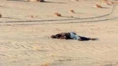 رجل ملقى في الصحراء.jpg