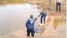 العثور على جثة في بركة مياه.jpg