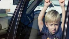 اطفال داخل مركبة.jpg