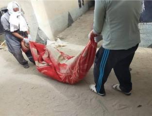 سيدة مصرية تقتل زوجها.jpg