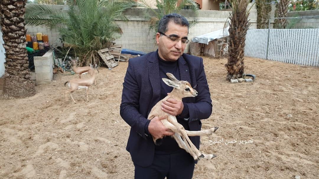 المهندس علاء الدين الاعرج يربي الغزلان.jpg