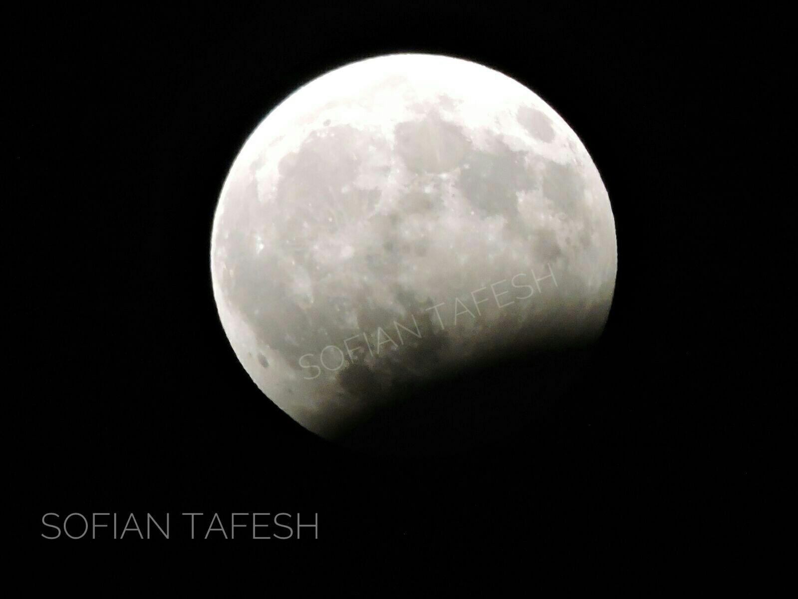 خسوف القمر في غزة1.jpeg